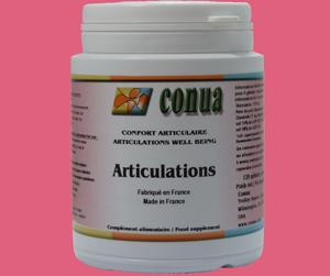 Articulation (chondroïtine)